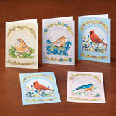 Song Bird Greeting Cards Set of 24